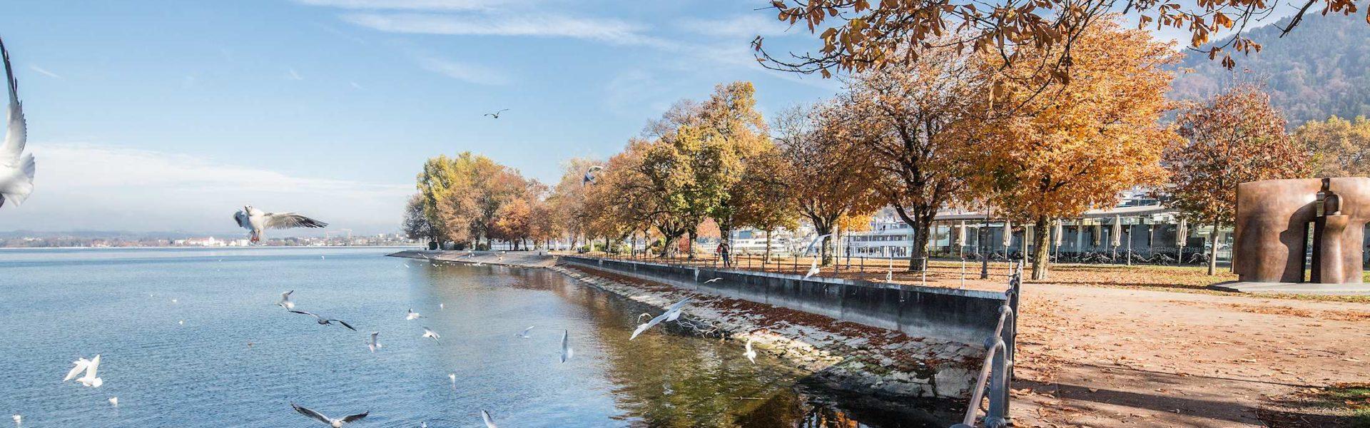 Herbst am Bodensee Ufer, Bregenz, Urlaub in Vorarlberg (c) Petra Rainer, Bodensee-Vorarlberg Tourismus