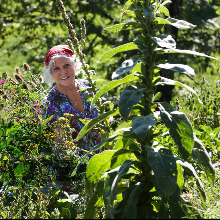 Kräuterwanderung mit Eva Wachter © Udo Bernhart