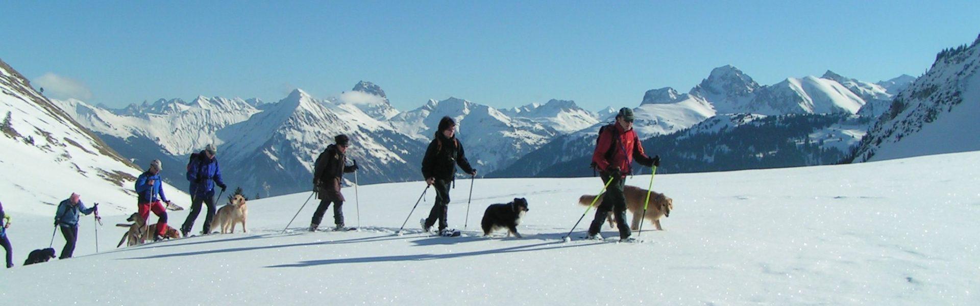 Winterwandern mit dem Hund (c) Thomas Bauer / Lexlupo