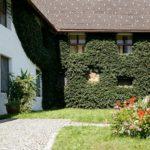 Klosterkeller Propstei St. Gerold