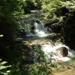Brühlbach Wasserfälle