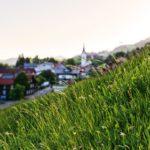 Gemeinde Riefensberg