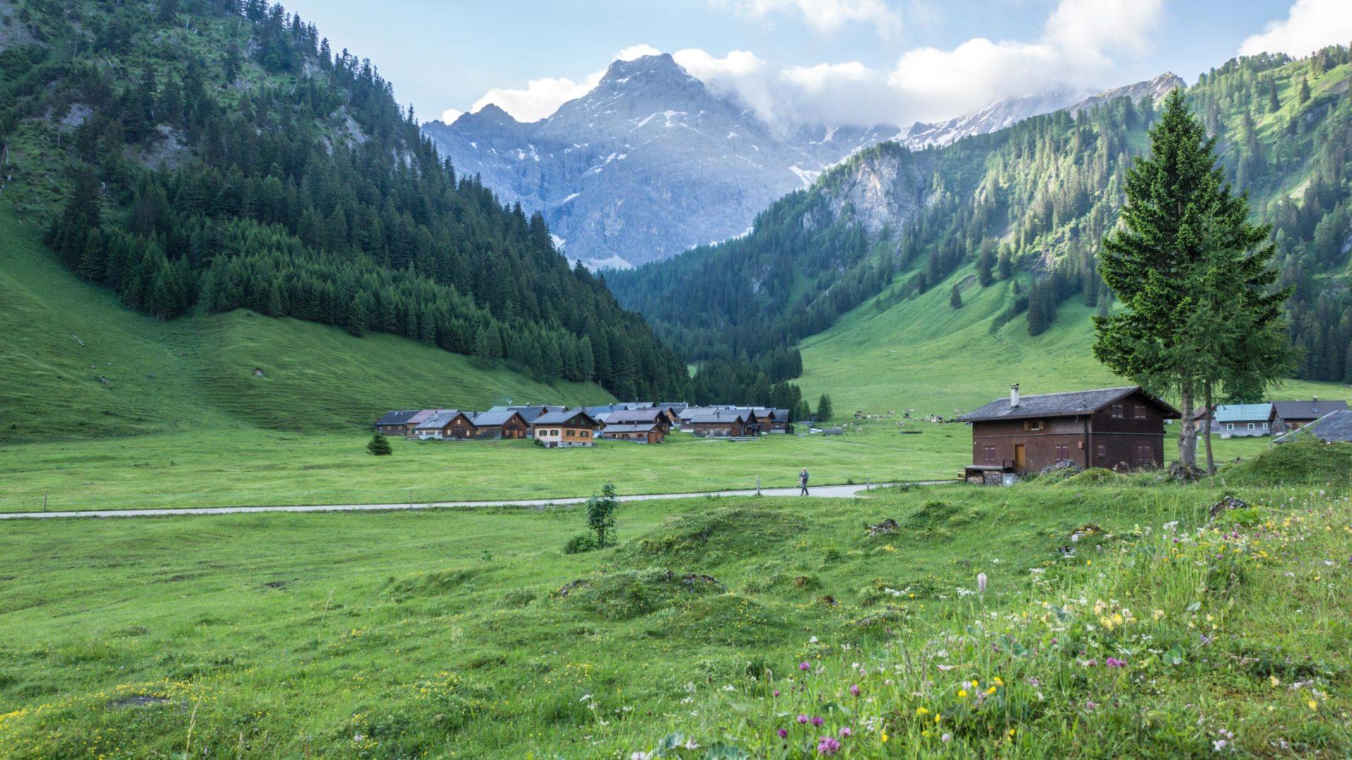 Im Gamperdonatal - Alpsiedlung Nenzinger Himmel mit Panülerkopf im Hintergrund
