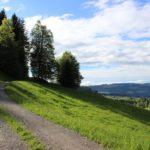 Rotenberg Waldweg