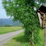 Talebene bei Schnepfau