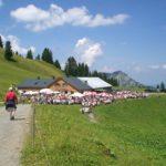 Weisenblasen auf der Alpe Wildgunten