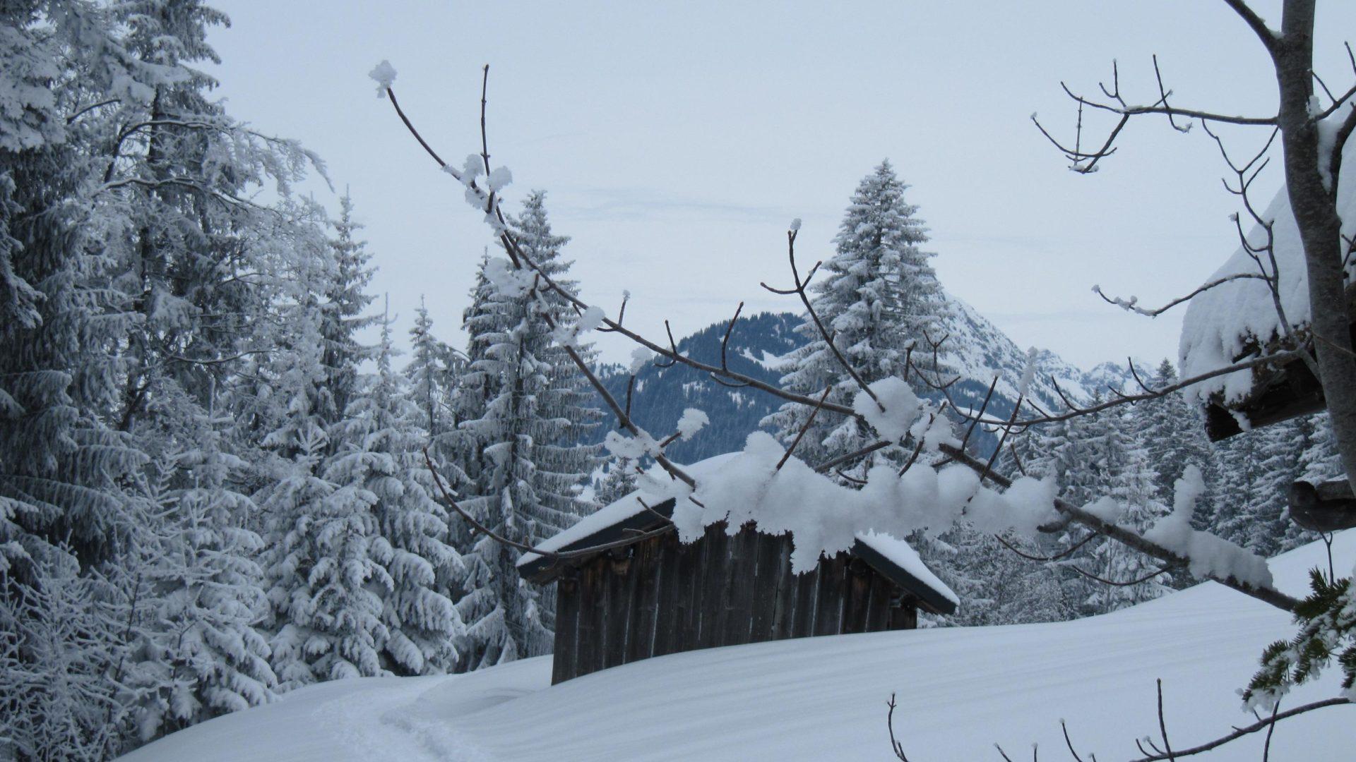 Winterwanderung am Wieseweg