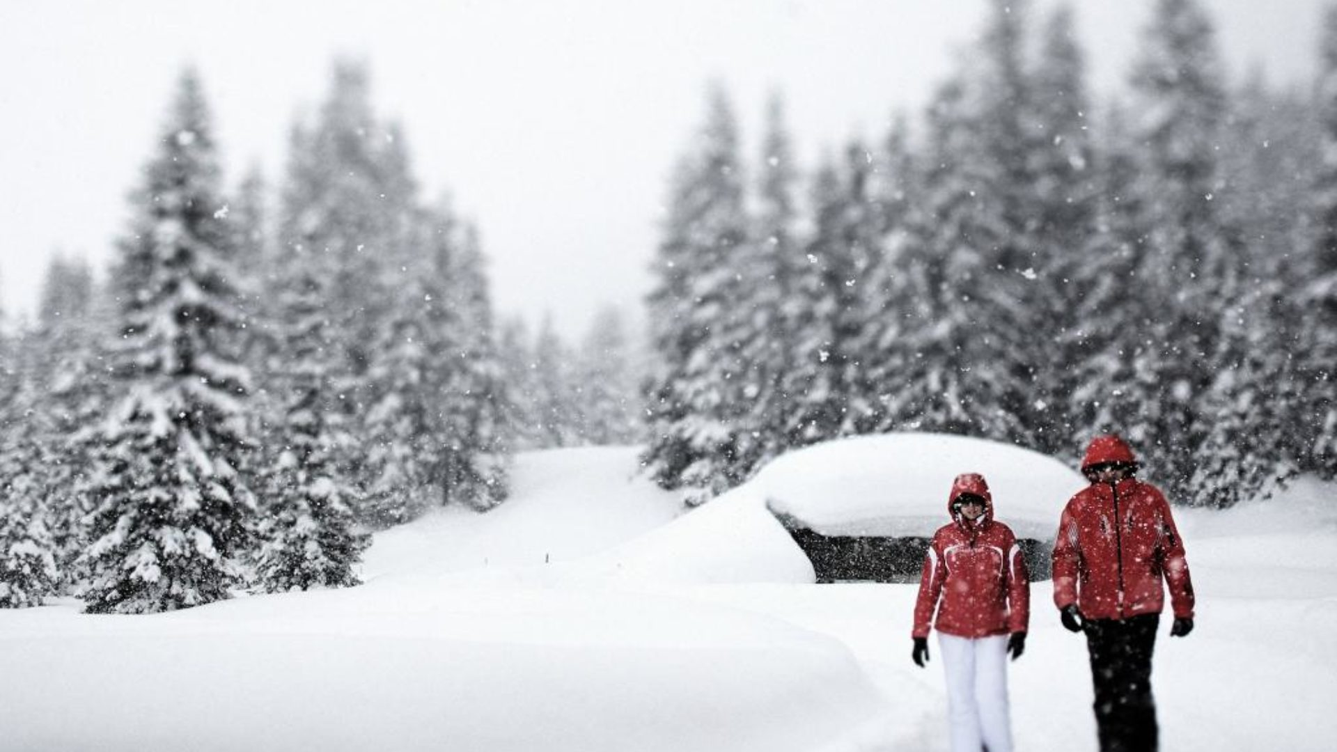 Winterwanderweg Zürs