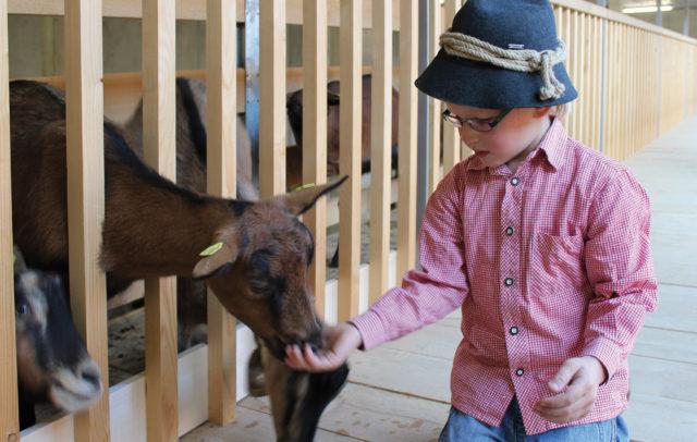 Bauernhof be-greifen, Kind mit Ziege, Metzler NATURHAUTNAH © naturhautnah.at