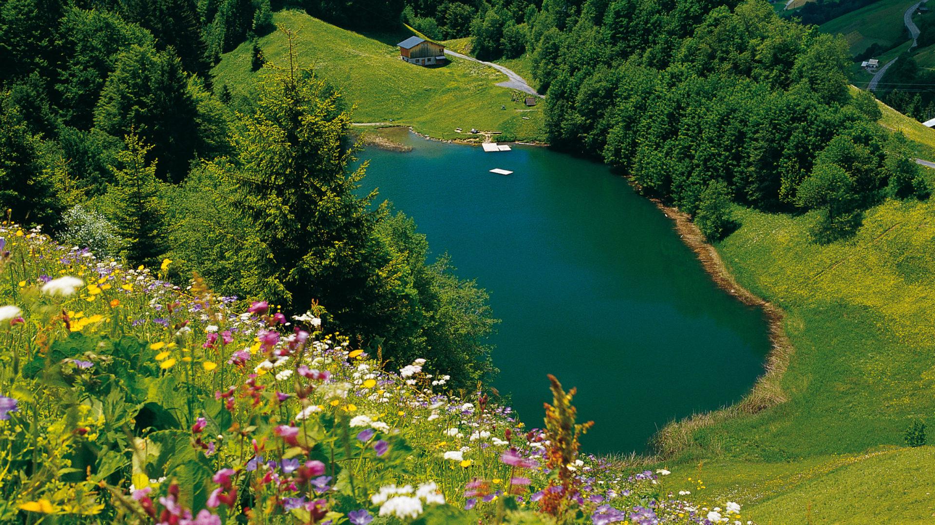 Seewaldsee Biosphärenpark Großes Walsertal (c) Christa Branz/Vorarlberg Tourismus