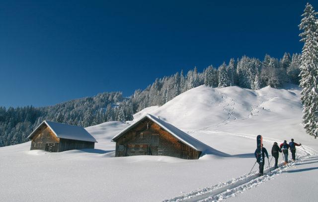 Skitouren - Skitourengeher Schwarzenberg (c) Ludwig Berchtold/Vorarlberg Tourismus