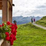 Wandern auf die Alpe Sattelegg im Bregenzewald © Adolf Bereuter / Bregenzerwald Tourismus
