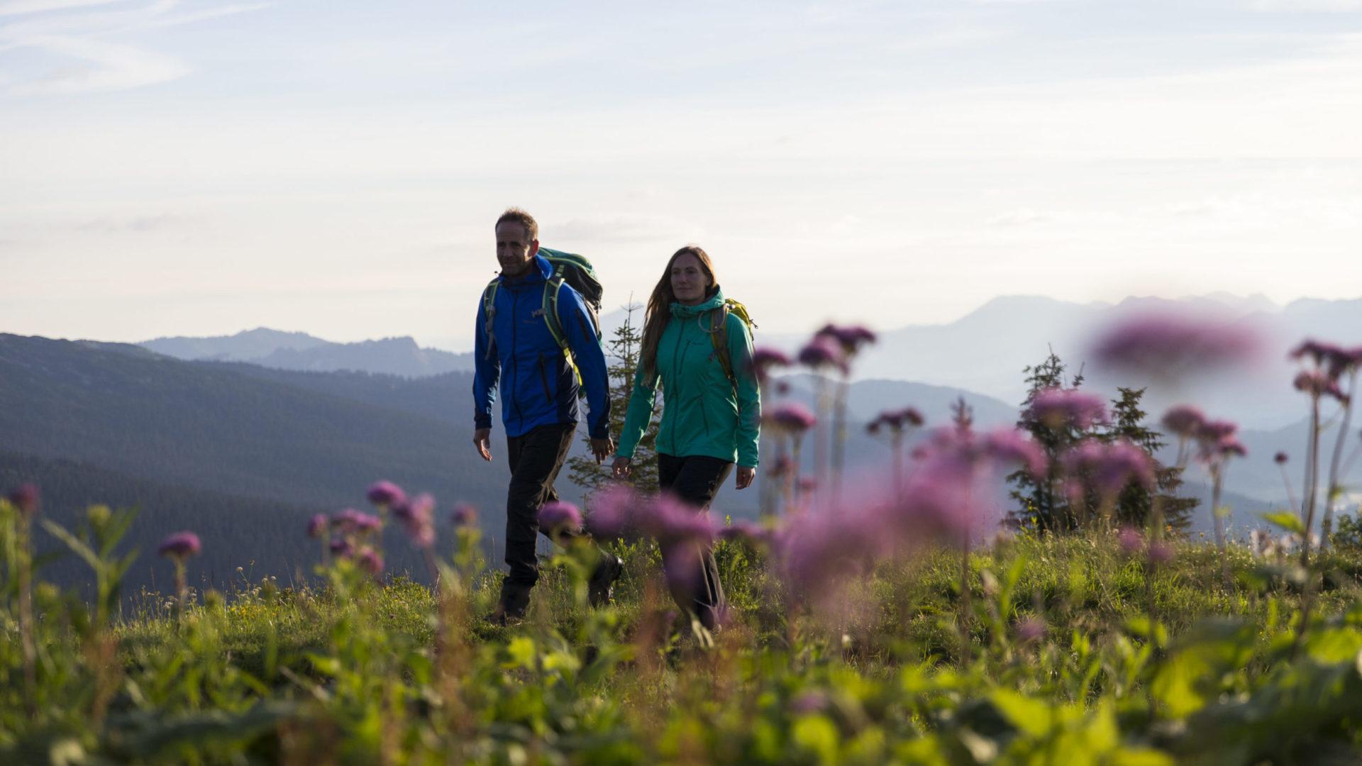 Sonnenaufgangswanderung aufs Walmendingerhorn im Kleinwalsertal © Oliver Farys / Kleinwalsertal Tourismus