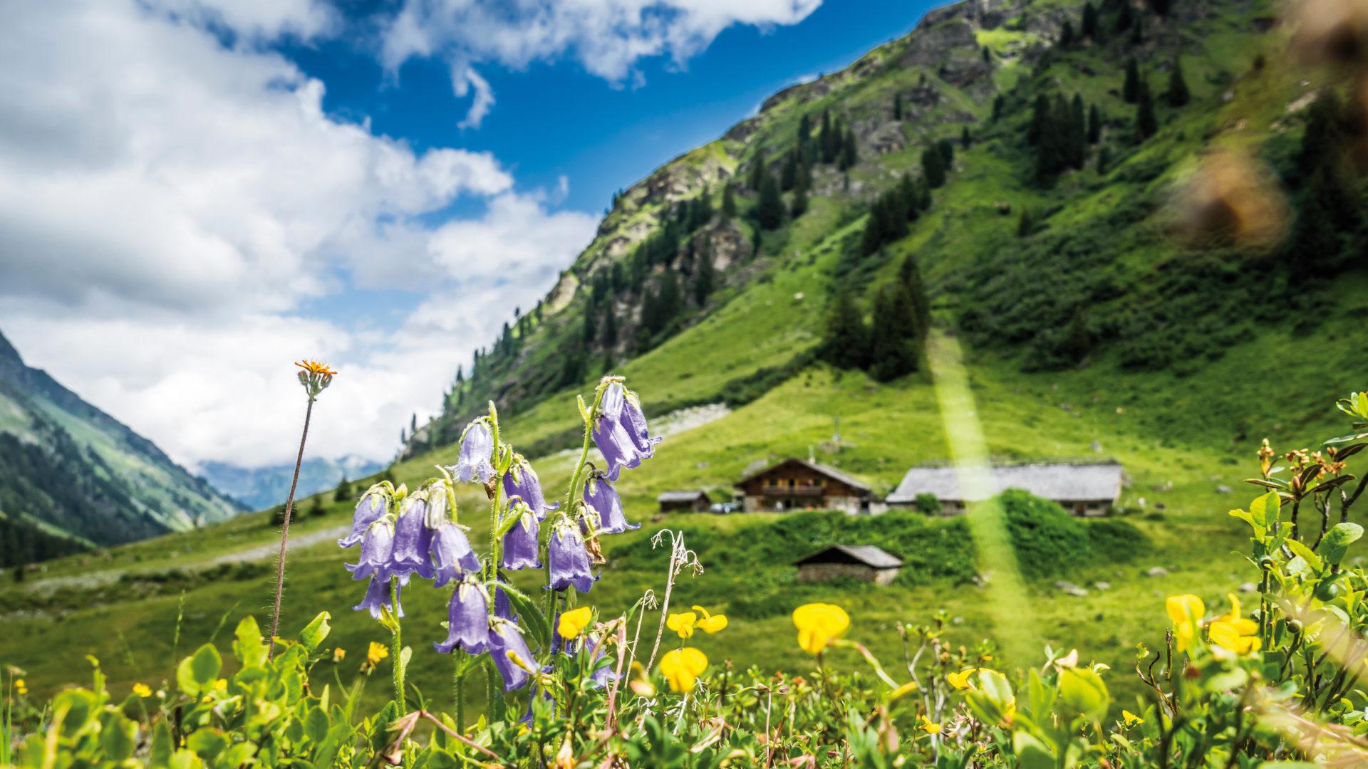 Vorarlberg Karte Berge.Wandern In Vorarlberg Tipps Und Online Wanderkarte Vorarlberg