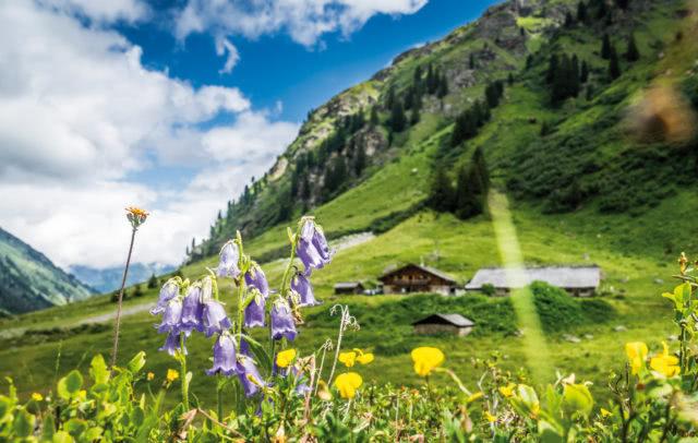 Alpe Garnera im Montafon © Dietmar Denger / Vorarlberg Tourismus
