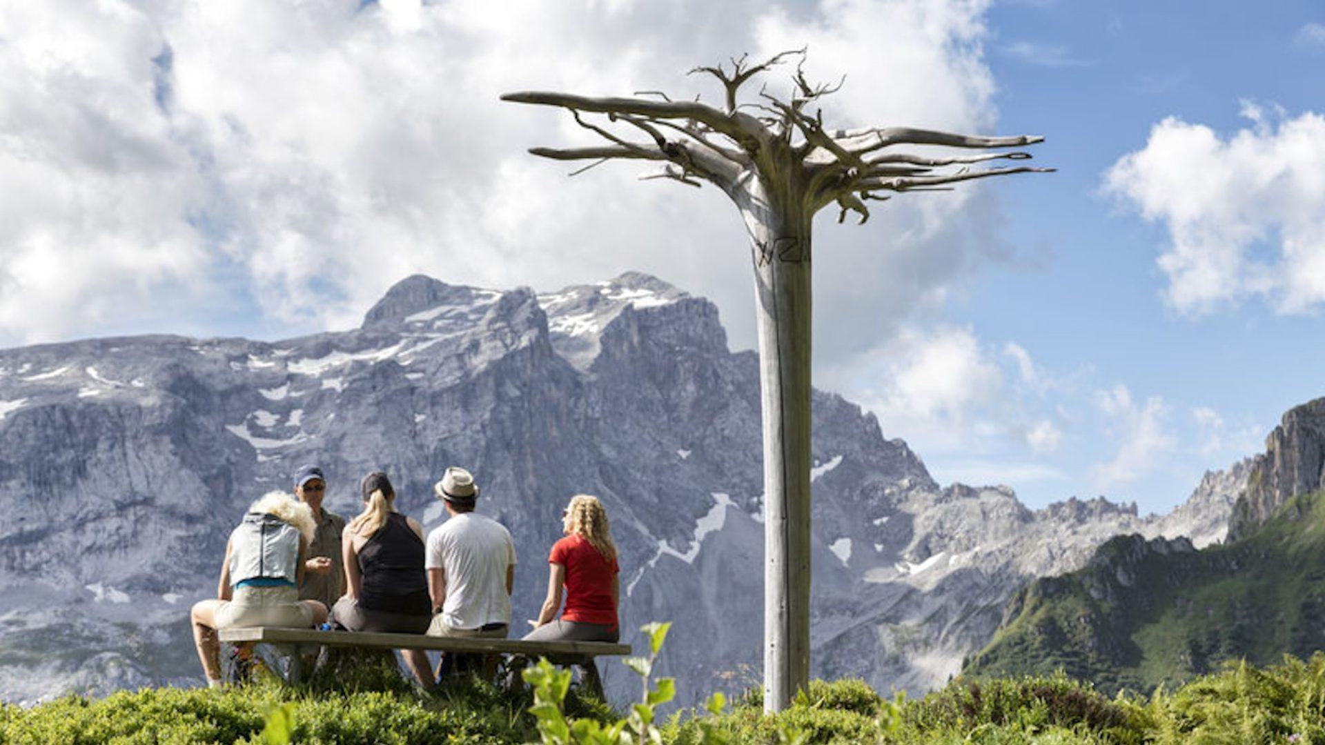 Gauertaler AlpKulTour, Wanderweg, Mythenbaum (c) Andreas Haller / Montafon Tourismus GmbH