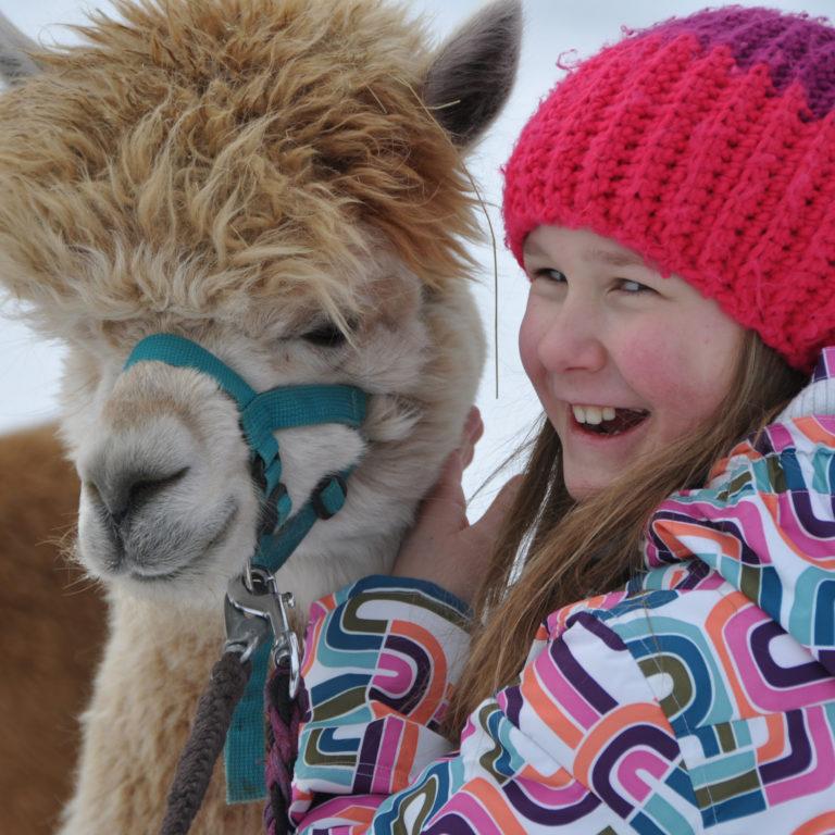 Tierische Begegnung - Alpaca-Lama-Wanderung mit Birgit Knecht © alpaca-lama.com