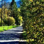 Weg entlang der Bregenzerach