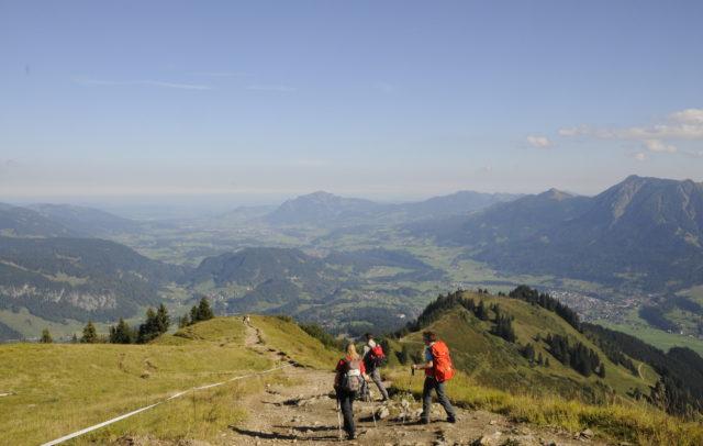 Blick vom Wiesenrücken am Fellhorngrad nach Norden © Peter Freiberger / Vorarlberg Tourismus