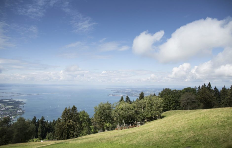 Panoramablick vom Pfänder © Petra Rainer / Bodensee-Vorarlberg Tourismus