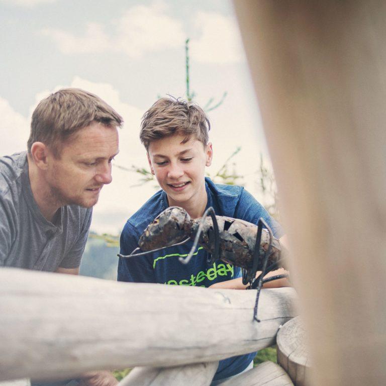 Die Ameisenwelt entdecken © Markus Gmeiner / Bergbahnen Brandnertal