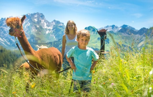 Top Family Familienhotel Alpenresort Walsertal, Sommerwanderung mit Alpakas © Alpenresort Walsertal