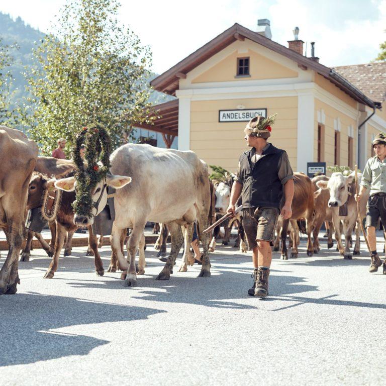 Bauernhof Farnach, Andelsbuch, Austria - rockmartonline.com
