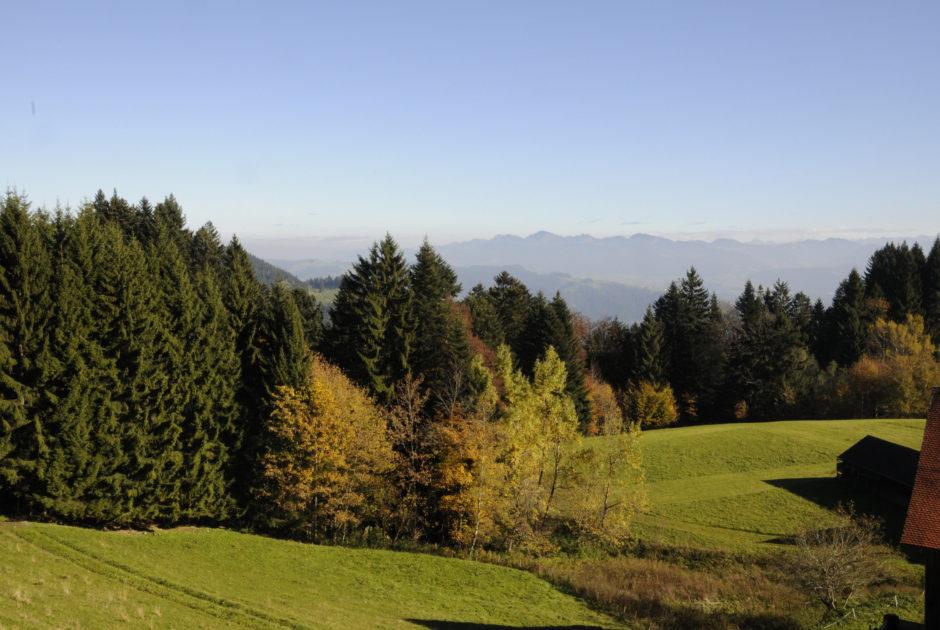 Herbststimmung am Pfänder – im Hintergrund Gipfel im Bregenzerwald. © Peter Freiberger / Vorarlberg Tourismus