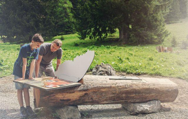 Tiererlebnispfad Brandnertal - Die Natur entdecken am Tierwelten-Weg (c) Markus Gmeiner - Bergbahnen Brandnertal