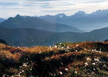 Wald am Arlberg, Herbst in Vorarlberg © Marco Mathis / Vorarlberg Tourismus