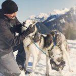 Husky Toni, Bürserberg (c) Markus Gmeiner - Vorarlberg Tourismus GmbH