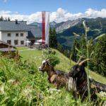 Berggasthof Grabs im Sommer