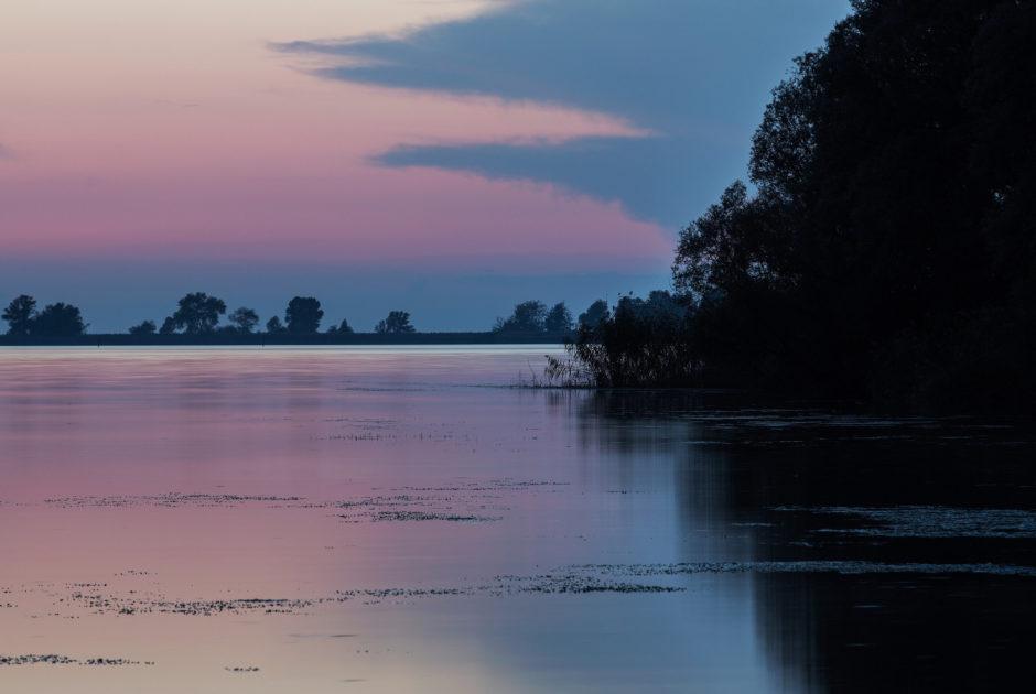 Rheindelta © Markus Gmeiner / Vorarlberg Tourismus GmbH