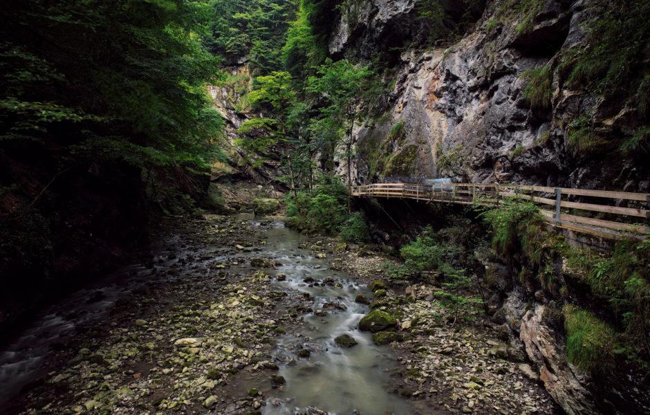 Rappenlochschlucht, Dornbirn © Markus Gmeiner / Vorarlberg Tourismus GmbH