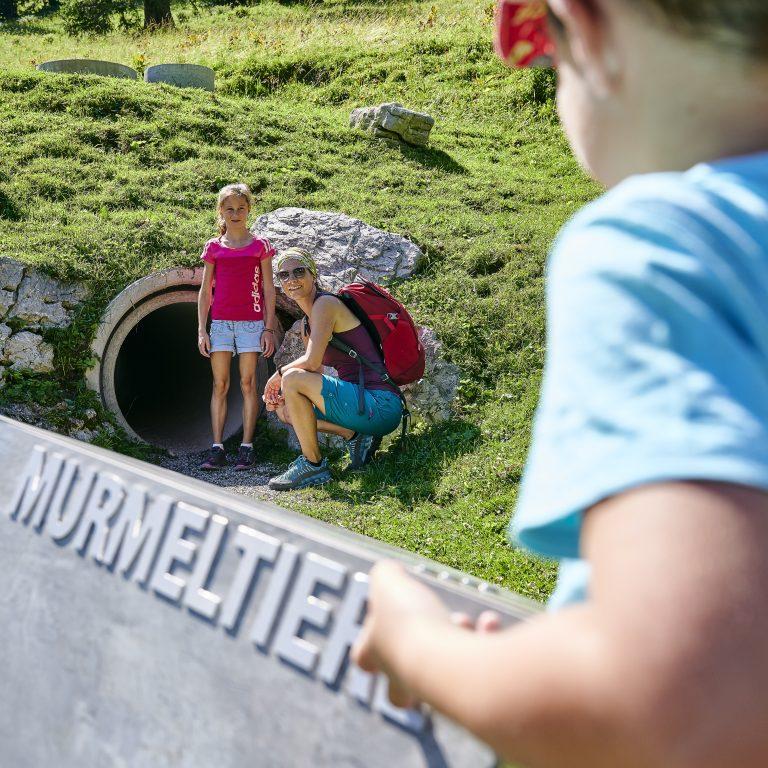 Tierwelten-Weg Brandnertal (c) alexander Kaiser - Bergbahnen Brandnertal