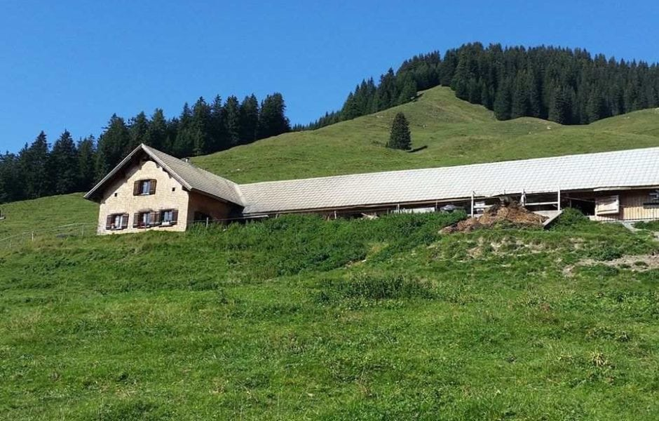 Alpe Staffelfelder, Raggal Marul (c) Alpe Staffelfelder / Facebook.com