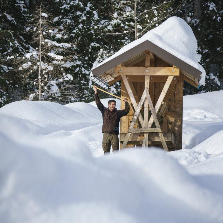 Andi Fritz Wildfuetterung Hoefle-Alp in Schwende © Dietmar Denger / Vorarlberg Tourismus