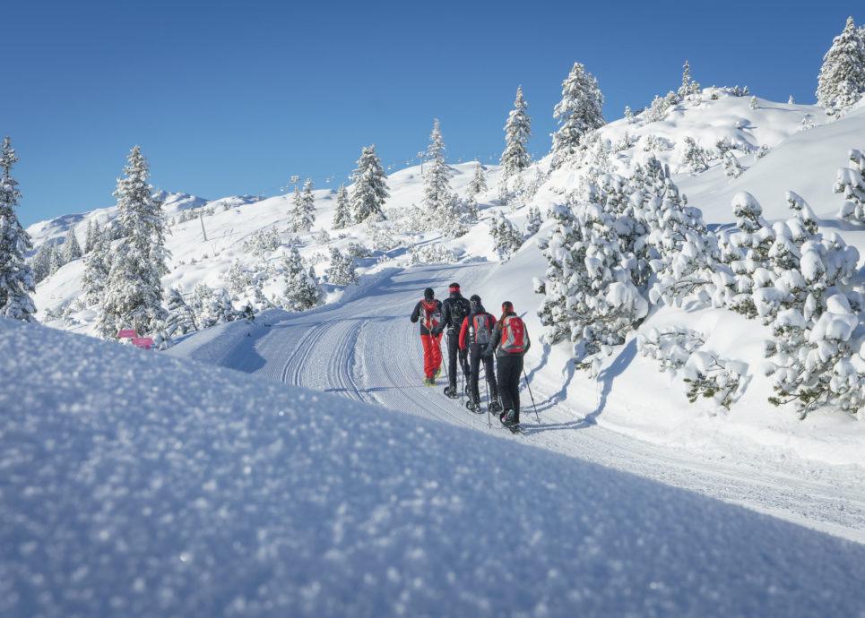 Holiday Regions Vorarlberg Information About Brandnertal