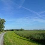 Gebiet Rheindelta