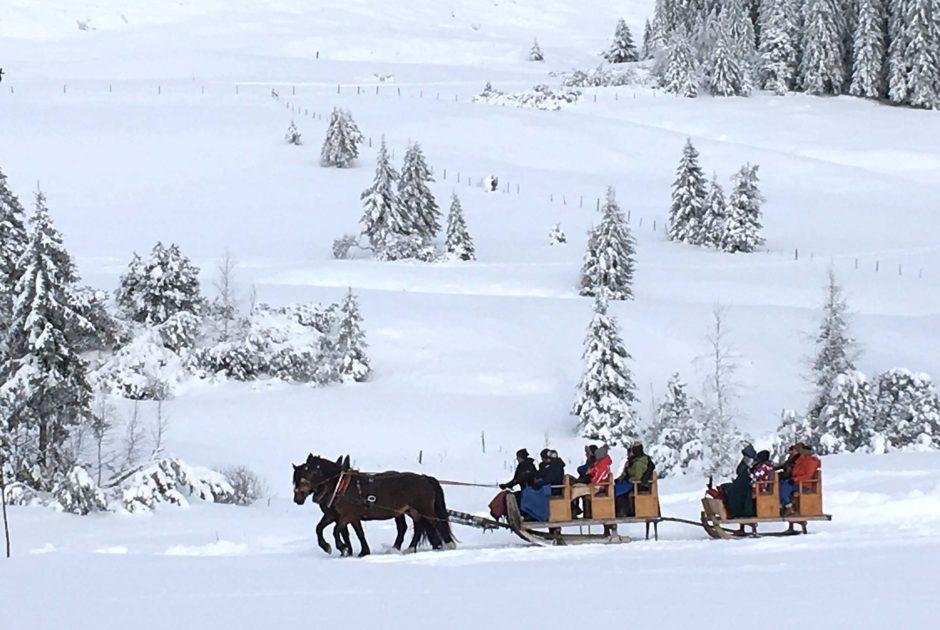 Pferdeschlittenfahrt, Hochhäderich, Hittisau, Bregenzerwald, abseits der Pisten (c) Daniela Kaulfus / Vorarlberg Tourismus GmbH