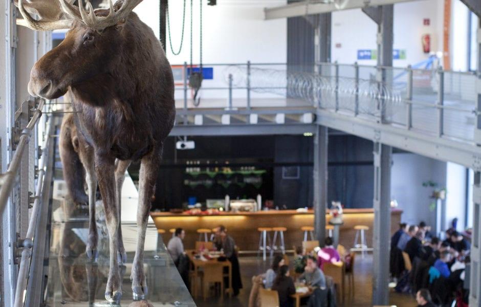 inatura - Erlebnis Naturschau (c) Petra Rainer - Bodensee-Vorarlberg Tourismus GmbH