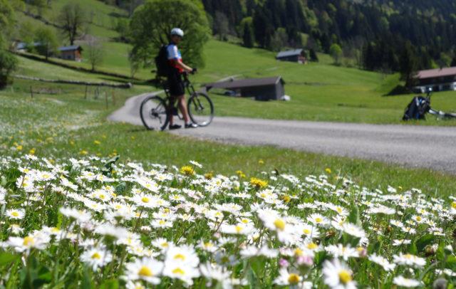 Rad-Fruehling-Grosses-Walsertal-Alpe-Laguz(c)Verena Hetzenauer-Vorarlberg-Tourismus © Verena Hetzenauer undefined