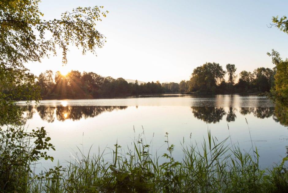 Sonnenuntergang Alter Rhein bei Hohenems (c) Oberhauser Photgraphy-Vorarlberg Tourismus