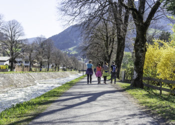 Spaziergang am Litzdamm im Frühling
