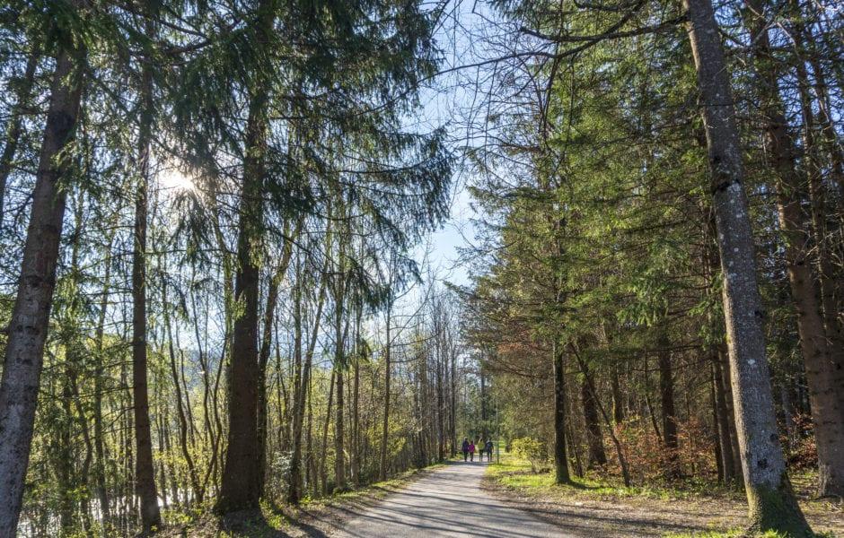 Montafon Illweg Fruehlingswanderung 11 (c) Vorarlberg Tourismus-Agnes Ammann