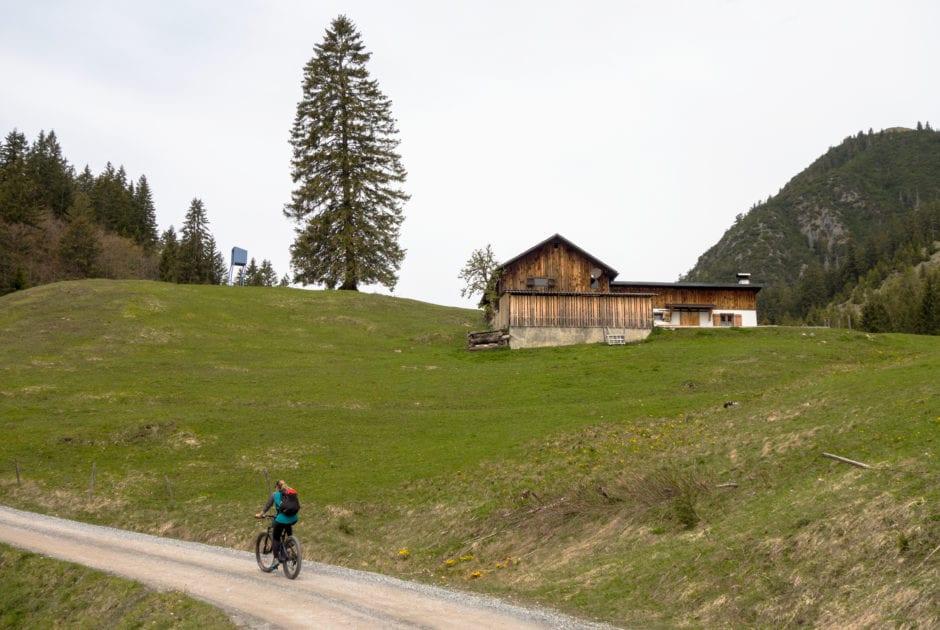 Mountainbiken am Muttersberg in Nüziders / Bludenz (c) Vorarlberg Tourismus