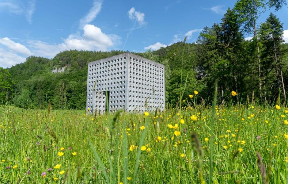 Blick aus dem Wasserhaus St. Arbogast, (c) Katharina Fa, Vorarlberg Tourismus