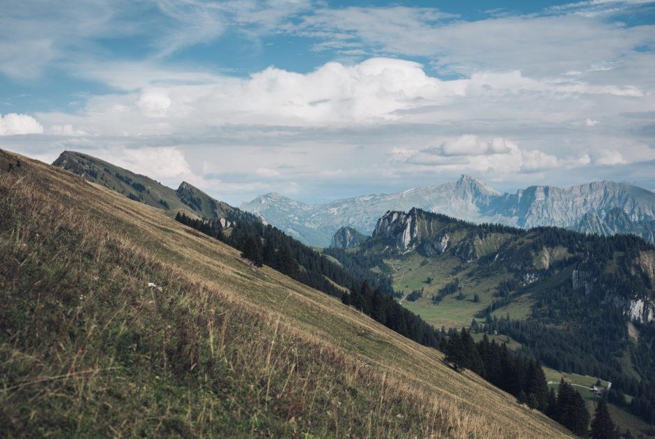 Blick auf die Winterstaude und den Hohen Ifen © Ian Ehm, friendship.is