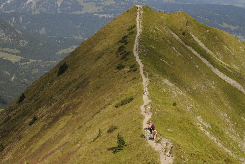 Blick vom Wiesenrücken am Fellhorngrad nach Norden (c) Peter Freiberger-Vorarlberg Tourismus
