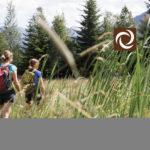 Wandern Hochmoor Hörnlepass - Walser Omgang